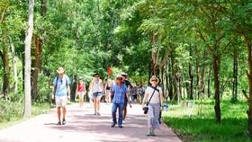 Khách nước ngoài tham quan quần thể di sản Mỹ Sơn