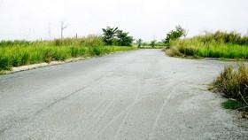 Bình Dương: Thu hồi các dự án nhà ở chậm triển khai