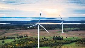 Còn nhiều tiềm năng phát triển điện gió, điện mặt trời