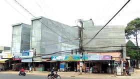 Nhiều nhà nuôi chim yến tự phát ngay trong  khu dân cư tại thị xã Phước Long