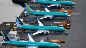 Các máy bay Boeing 737 MAX tại nhà máy Boeing ở Renton, Washington, Mỹ. Ảnh: REUTERS