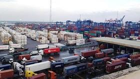 Hàng hóa thông quan tại cảng Cát Lái