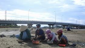 Đào phễnh góp phần cải thiện cuộc sống cho những người lao động nghèo. Ảnh: BAOBINHDINH. VN