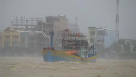 Bão số 12 giật cấp 15 đang ở trên đất liền ven biển các tỉnh Khánh Hòa - Phú Yên