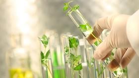 Ứng dụng khoa học công nghệ để bảo vệ môi trường