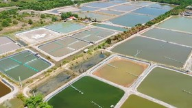 Tiết kiệm năng lượng nuôi trồng thủy sản