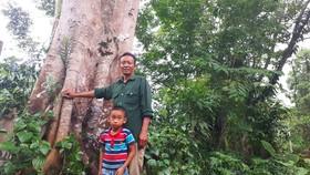 Ông Lê Văn Hòe và cháu nội tại một cây cổ thụ ở vùng rừng biên giới xã Phú Gia