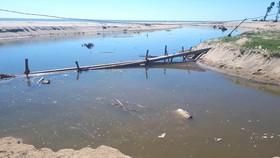 Nước thải từ hồ nuôi tôm được đổ ra lạch rồi chảy thẳng ra biển bốc mùi hôi thối