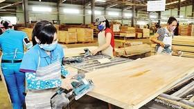 Mỹ là thị trường xuất khẩu lớn nhất của Đồng Nai