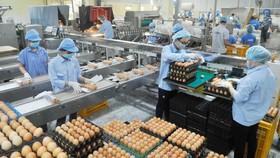 TPHCM triển khai chương trình bình ổn thị trường 2019