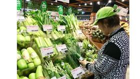 Gói thực phẩm bằng lá chuối: Vừa rộ lên đã lắng