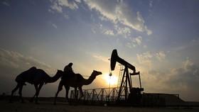 Bahrain phát hiện mỏ dầu lớn