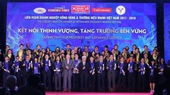 Vinh danh các doanh nghiệp có thương hiệu mạnh tại Việt Nam
