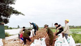 Bộ đội cùng người dân huyện Quốc Oai (Hà Nội) chung sức đắp đê bao ngăn nước lũ sông Tích tràn vào khu dân cư ngày 22-7