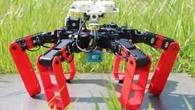Phát minh robot mới di chuyển không cần GPS