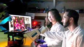 Điều chỉnh 2 loại enzyme điều trị ung thư tuyến tụy