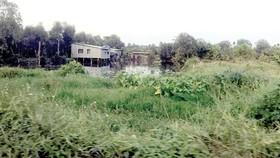 Một thửa đất nông nghiệp tại quận 9. TPHCM        ẢNH:   HUY ANH