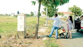 Xem mua đất nền tại quận 2, TPHCM. Ảnh: CAO THĂNG