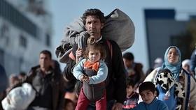 Hà Lan và Đức nêu điều kiện tiếp nhận người  di cư
