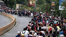 UNHCR quan ngại sâu sắc về chính sách nhập cư của Mỹ