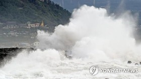 This photo taken on Aug. 22, 2018, shows typhoon waves in coastal waters off Seogwipo on the southern island of Jeju. (Yonhap)
