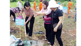 Phát động trồng hơn 10.000 cây xanh