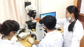 TS Nguyễn Thị Hiệp (bìa phải) hướng dẫn nhóm nghiên cứu tại Trường Đại học Quốc tế - Đại học Quốc gia TPHCM