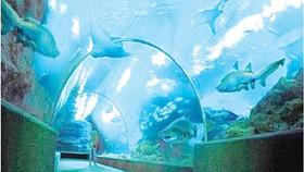 Công viên thủy cung cao nhất thế giới