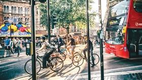 Người dân New Zealand yêu xe đạp