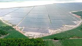 Tiên phong năng lượng xanh