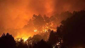 Tây Ban Nha: Hơn 8.000 người sơ tán vì cháy rừng