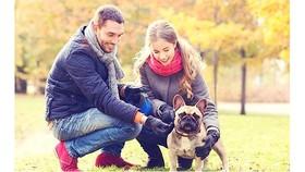 Dắt chó cùng đi dạo cũng là một hình thức tập thể dục