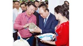 Thủ tướng Nguyễn Xuân Phúc thăm gian hàng trưng bày các sản phẩm nông nghiệp. Ảnh: TTXVN