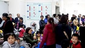 Hơn 230 trẻ được đưa từ Bắc Ninh đến Hà Nội để xét nghiệm sán heo