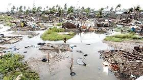 Mất mát lớn vì thảm họa thiên nhiên