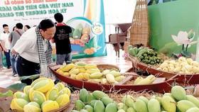Việt Nam xuất lô xoài đầu tiên sang Mỹ