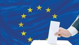 Thăm dò trước vòng bầu cử Nghị viện châu Âu: Phe thân EU chiếm ưu thế