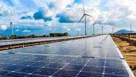 Trung Nam Group: Đầu tư 10.000 tỷ đồng dự án năng lượng tái tạo