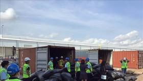 Thu giữ hơn 5,2 tấn vảy tê tê tại cảng quốc tế Cái Mép