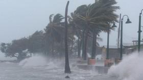 Sẽ có 7 - 9 cơn bão ảnh hưởng Trung bộ, Nam bộ