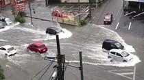 Nhiều nước gồng mình chống bão Tapah
