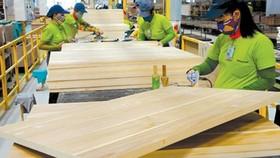Ngành gỗ đã xác định được hướng đi phù hợp