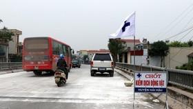 Dịch tả lợn châu Phi lan nhanh, Nam Định siết chặt khâu vận chuyển