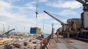 Bốc xếp hàng hóa tại Cảng Quy Nhơn. (Nguồn: TTXVN)