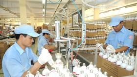 Sản xuất bóng đèn Điện Quang - một thương hiệu Việt. Ảnh: CAO THĂNG