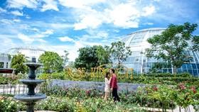 """Khám phá khu vườn """"kỳ hoa dị thảo"""" trên đảo kỷ lục Nha Trang"""
