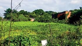 Quang cảnh thực tế dự án trên đường Dương Thị Giang.