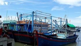 Tàu cá của ông Trần Đào (giữa, xã Phước Diêm, huyện Thuận Nam) hành nghề chụp đã nằm tại cảng Cà Ná hơn ba tháng vì hoạt động thua lỗ. (Ảnh: Nguyễn Thành/TTXVN)