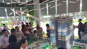 Cận cảnh sức nóng dự án đang làm mưa, làm gió tại Vũng Tàu