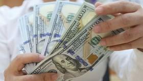 Việt Nam có thể phải phòng ngừa rủi ro dòng vốn nước ngoài đảo chiều